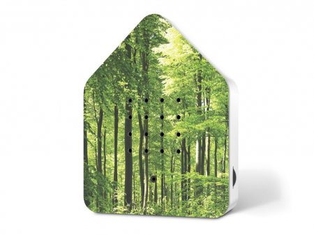 Zwitscherbox Wald