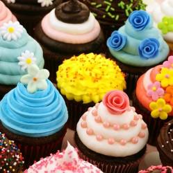 Cupcakes Backen und Dekorieren Sa. 02.02.2019  11-15 Uhr